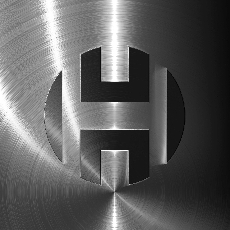 Hasdemir Logo 1